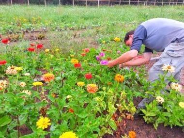 ABT_Cutting_Flowers